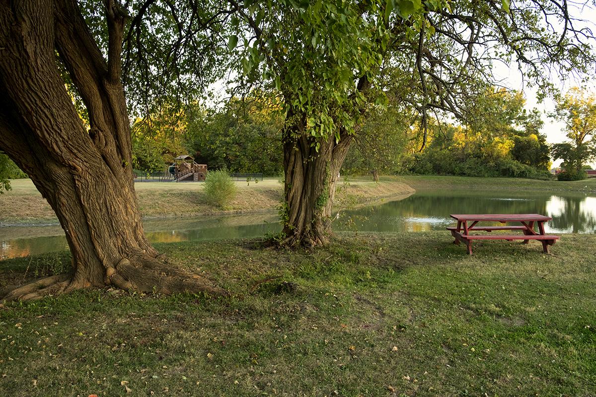 Brittlebank Park