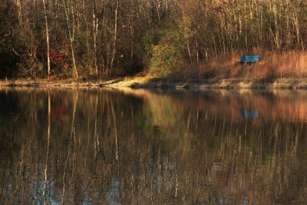 Scene from Harmonie State Park.Harmonie State Park.