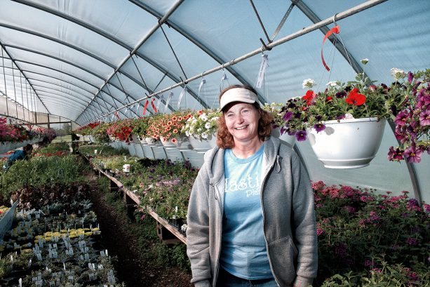 Hasting Plants Greenhouse