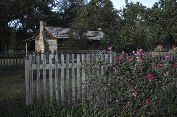 Lenz House Garden