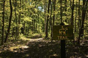 Harmonie State Park Horse Trails