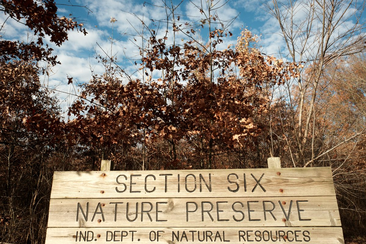 Section 6 Nature Preserve